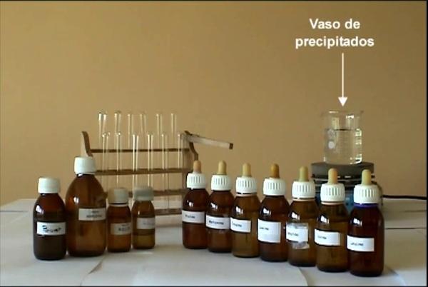 Identificación cualitativa de aminoácidos y proteinas