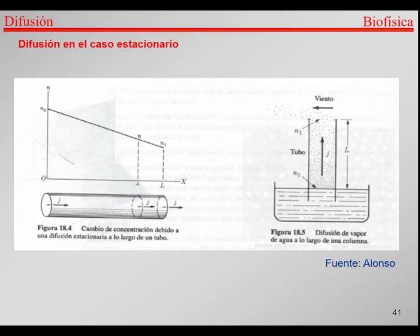 4.-Transporte-T41-T42- Difusion caso estacionario - Ejemplos