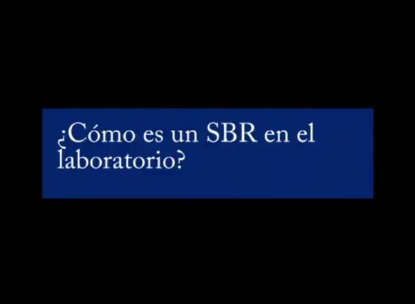 Reactor SBR