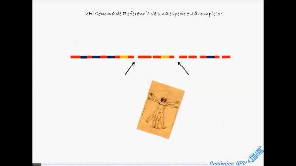 Genoma de Referencia