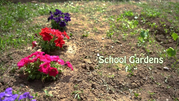 eSGarden - School Gardens for Future Citizens