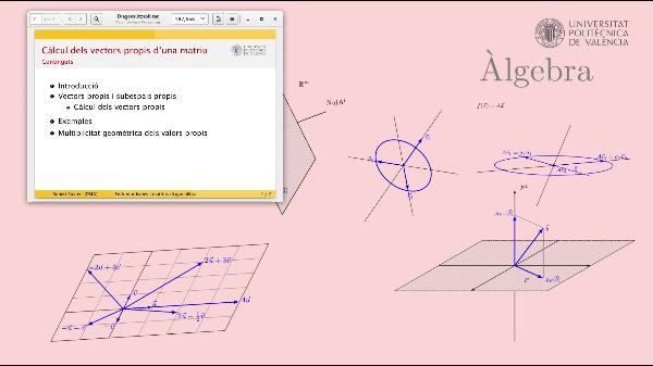Càlcul dels vectors propis