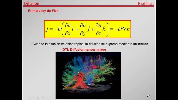 4.-Transporte-T27-Tensor de difusión