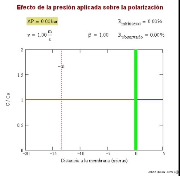 Efecto de la presión sobre la polarización de la concentración