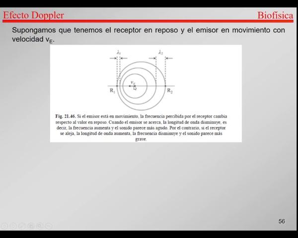 5.-Ondas-T55-T61-Doppler