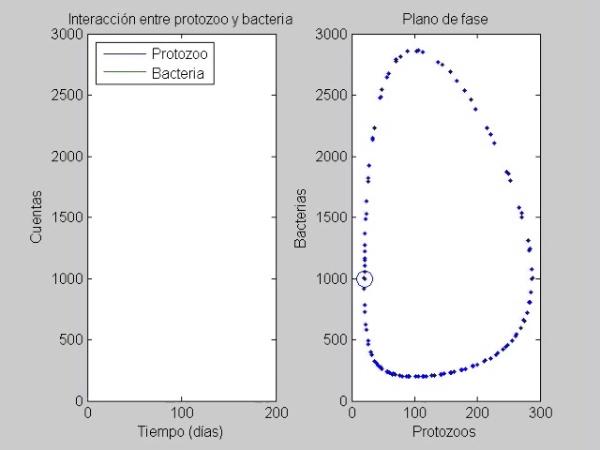 Estabilidad acotada en el plano de fase de un proceso biológico