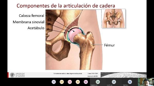 Clase de Biomateriales Estructurales_ Aplicaciones ortopédicas I