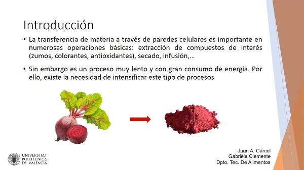 Practica-Influencia del pretratamiento con PEF en la extracción de betanina de remolacha