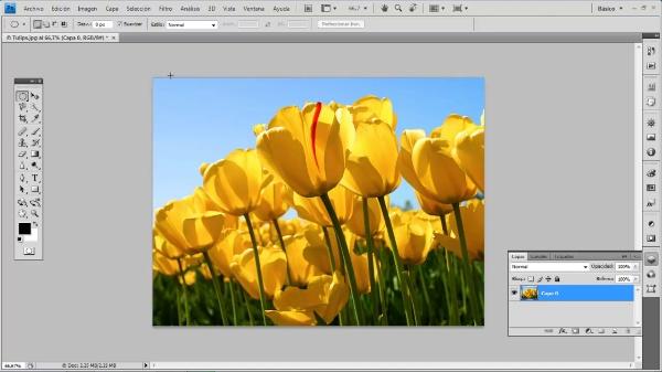 Photoshop CS4. Pincel de historia