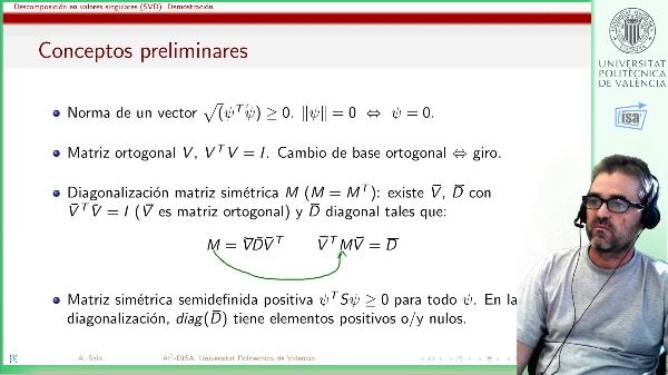 Descomposición en valores singulares: teorema y demostración