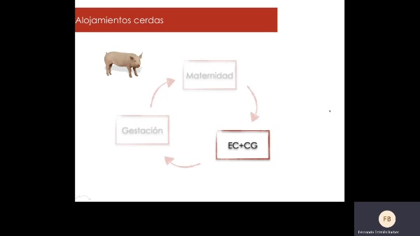 Alojamientos EC+CG y Verracos