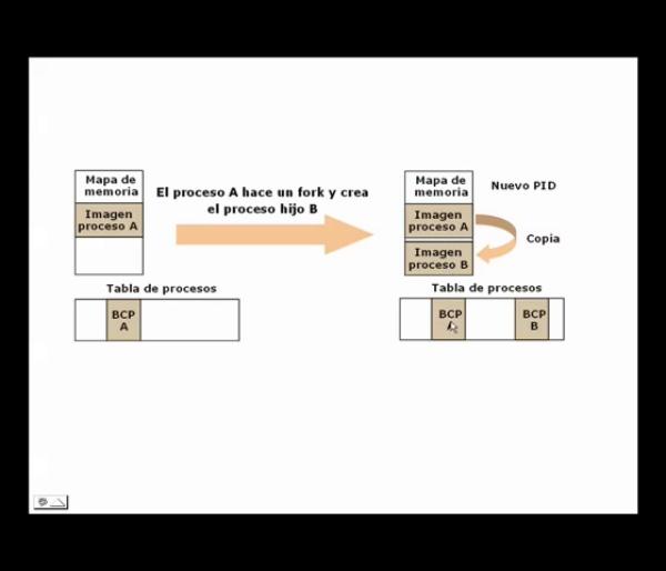 Creación de procesos en Unix