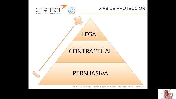 Citrosol - 2021 - Los secretos del éxito empresarial
