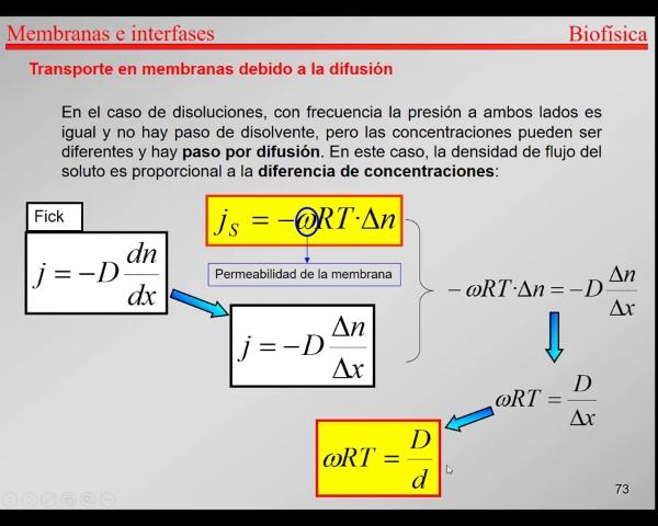 4.-Transporte-T73-T74- Membranas-diferencia de concentracion