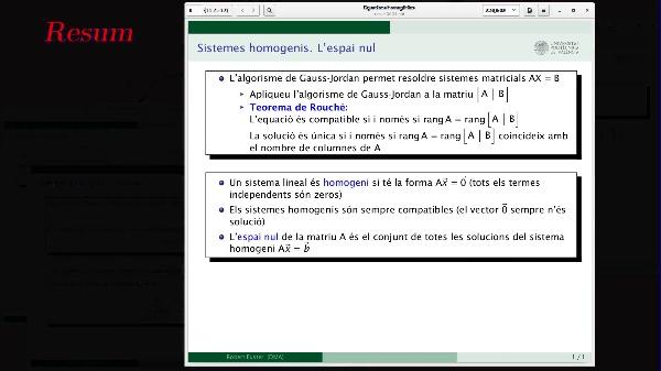 Equacions matricials i sistemes homogenis. L'espai nul