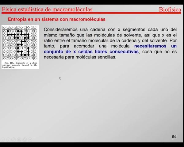 6.-Física Estadística T54-T57- Entropía macromoléculas