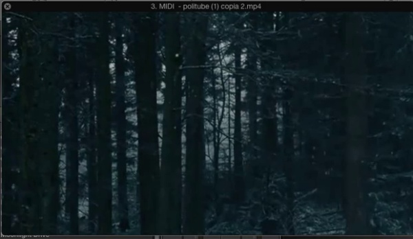 REPETICIÓN DE 1 MÚSICA EN DIFERENTES VÍDEOS  - Video 2