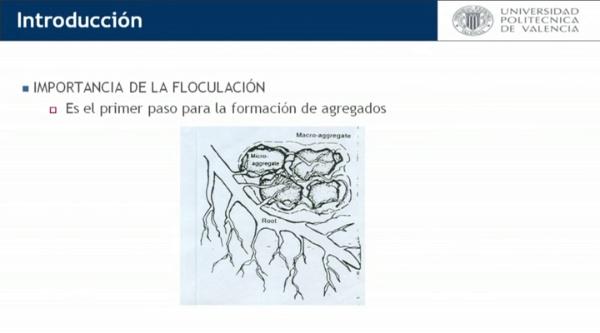 Efecto del sodio y del calcio sobre la estructura