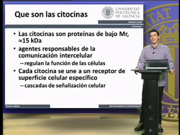 Citocinas, clasificación (II)