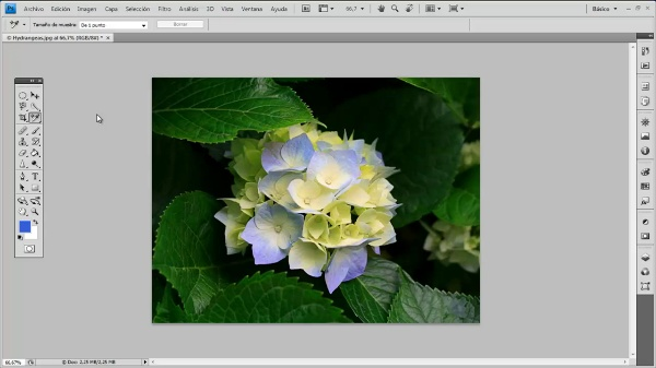 Photoshop CS4. Muestra de color