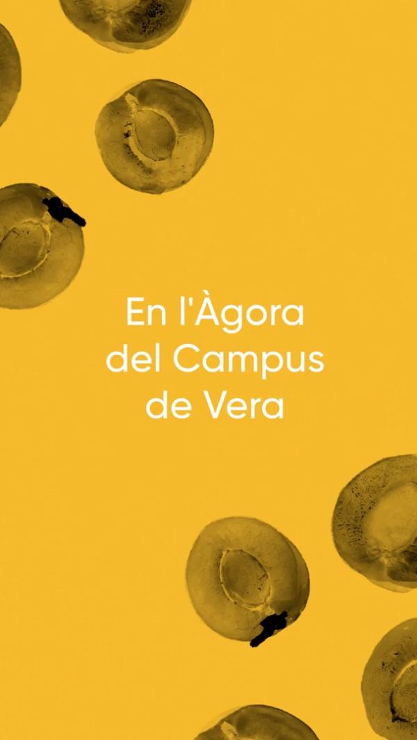 En l¿Àgora del Campus de Vera 4