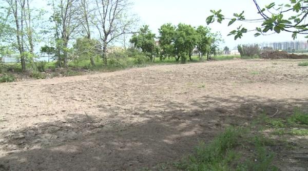 Presa de mostres d¿un sòl cultivat per anàlisi de fertilitat