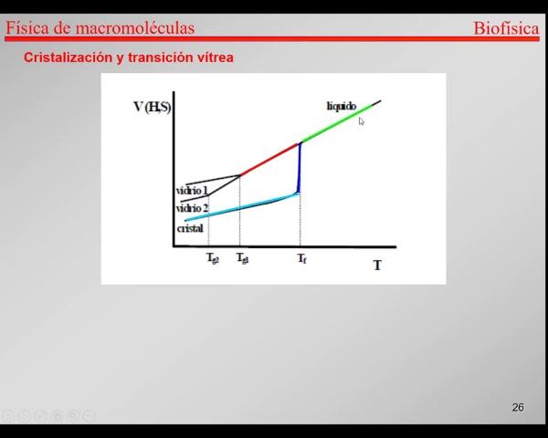 7.-Proteínas T25-T27-Cristalización y transición vítrea