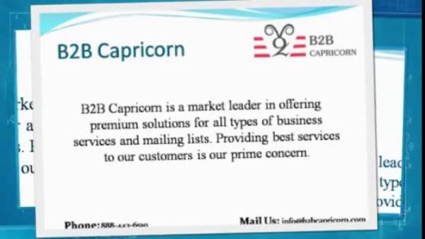 B2B Capricorn. Email Marketing Services