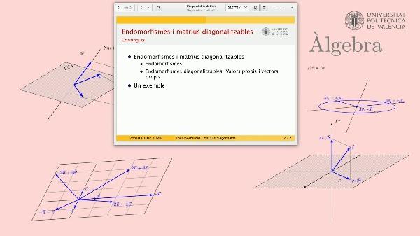 Endomorfismes i matrius diagonalitzables