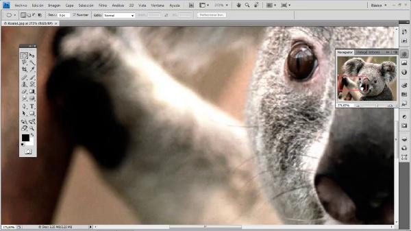 Photoshop CS4. Panel de información, Navegación e Histograma
