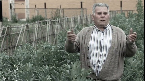 Cinco Palmos. Transformación de usos de suelo en la Huerta de Murcia
