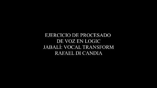 JABALI_VOCALTRANSFORMER_DICANDIA