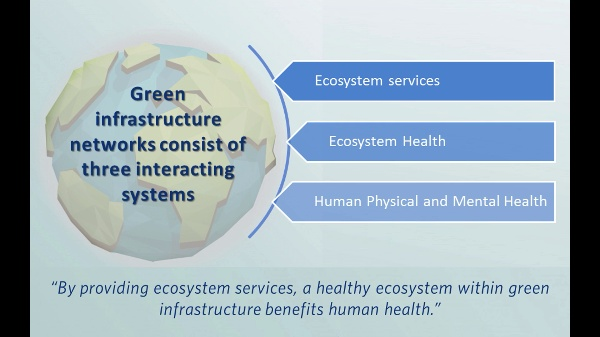 Green infrastructure, ecosystem services