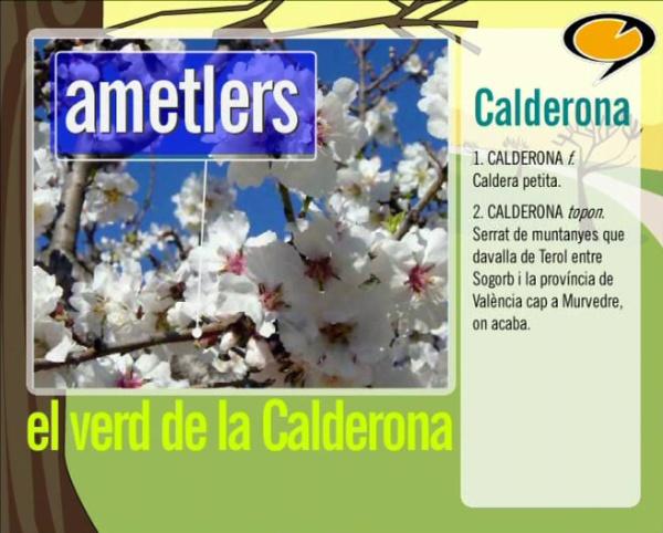 Tenim paraula: El verd de la Calderona