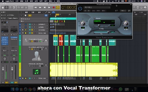 P1.2.2 Vocal Transformer