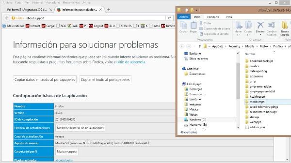 Error en pdfs en PoliformaT(mimetype)