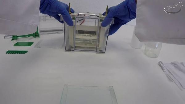 Montaje para electroforesis en gel de poliacrilamida