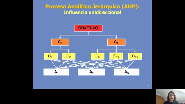 ANP. Analytic Network Process. Parte 1