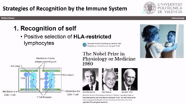 Reconocimiento Inmune