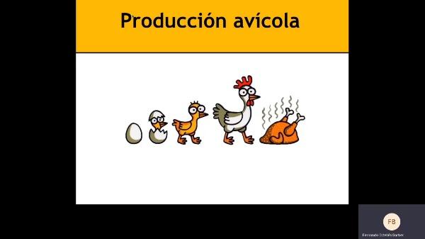 Bases productivas aves 1