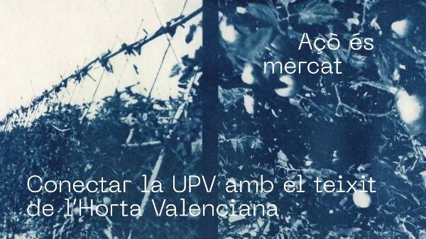 Transversal IV_Grupo 07_Blasco_Paola.mp4