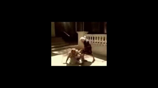 pelea viejas