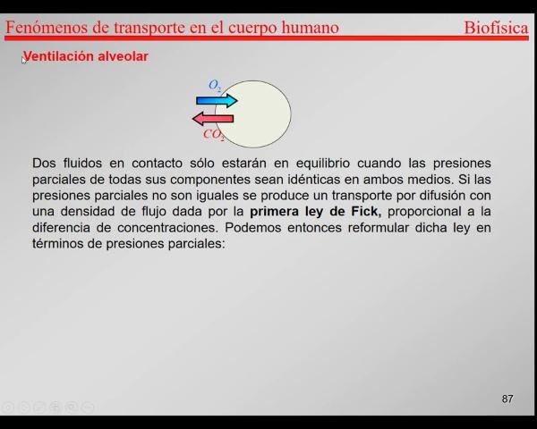 4.-Transporte-T86-T89-Ventilación alveolar