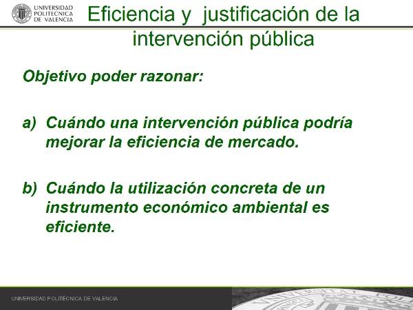 Justificación de la intervención pública