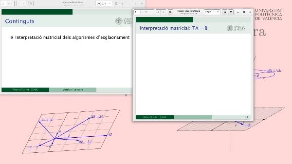 Interpretació matricial dels algorismes d'esglaonament