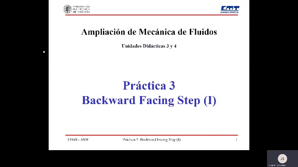 Práctica 3 - BSF1 AMF