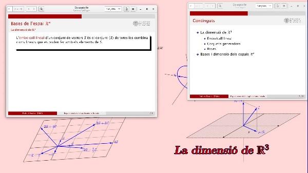 Bases i dimensió dels espais Rn
