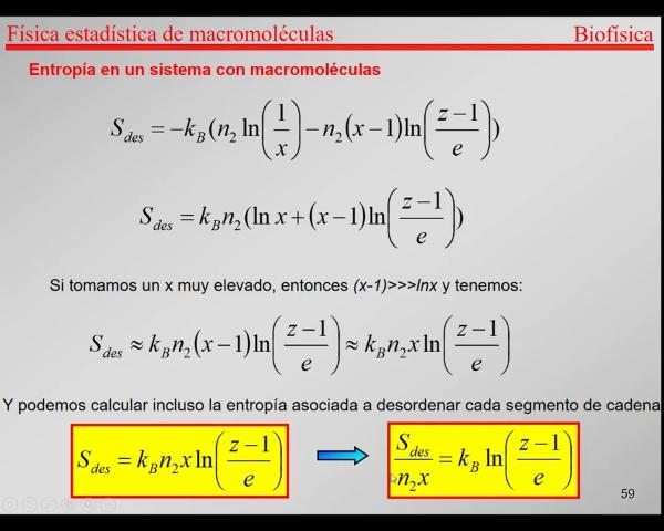 6.-Física Estadística T58-T61- Entropía de desorden y mezcla
