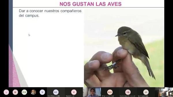 Charla aves en el campus de la UPV_15 diciembre 2021
