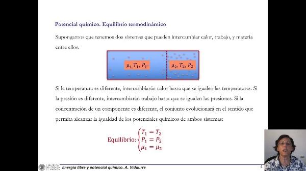 Ejemplos equilibrio potencial químico
